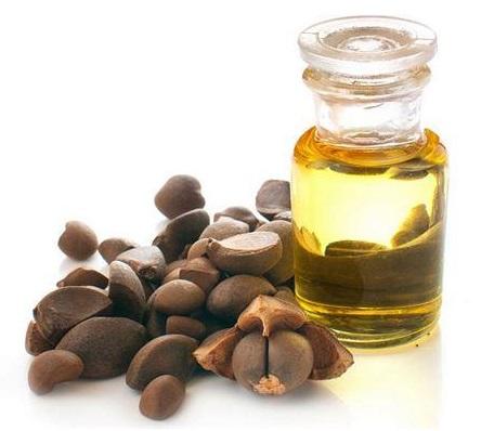 Camella Oleifera (Camellia)Seed Oil