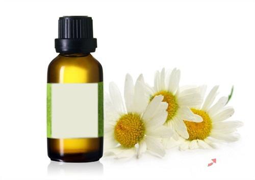 Chamomilla Recutita (Matricaria) Flower Oil